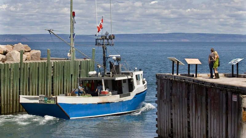 A fishing boat heads out into the Bay Of Fundy from Hall's Harbour, N.S. on Monday, June 8, 2009. (Andrew Vaughan / THE CANADIAN PRESS)