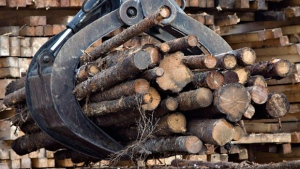 Workers pile logs at a softwood lumber sawmill on Nov. 14, 2008 in Saguenay, Que. (THE CANADIAN PRESS/Jacques Boissinot)