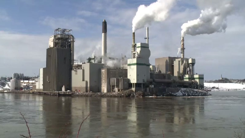 Irving Pulp and Paper has admitted its mill near the Reversing Falls tourist attraction in Saint John failed to meet standards under the federal Fisheries Act.