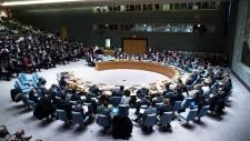 Arseniy Yatsenyuk speaks at UN Security Council