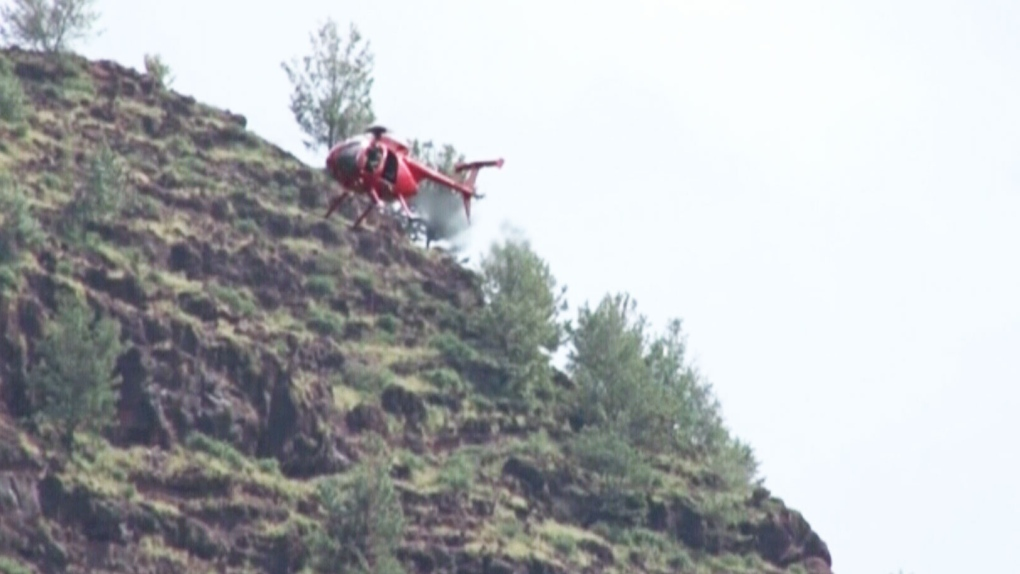 Canadian among two men killed in U S  ultralight crash   CTV