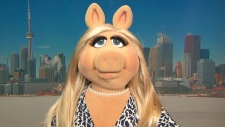 Canada AM: The original diva Miss Piggy