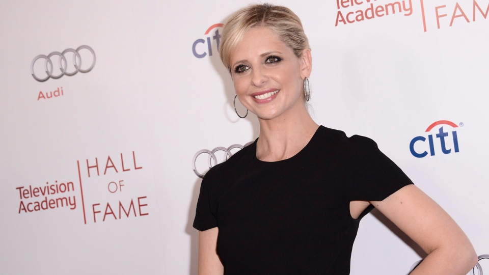 Actress Sarah Michelle Gellar attends the 2014 Television Academy Hall of Fame on Tuesday, March 11, 2014, in Beverly Hills, Calif. (Photo by Dan Steinberg / Invision / AP Images)
