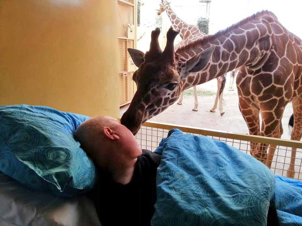 A giraffe at Blijdorp Zoo in Rotterdam licks terminally ill Mario Eijs on March 19, 2014. The 'kiss' was the last wish of Eijs, who is dying from a brain tumour; he worked at the zoo doing odd jobs for 25 years. (Provided/Stichting Ambulance Wens)
