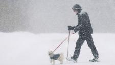 Winter storm in Montreal