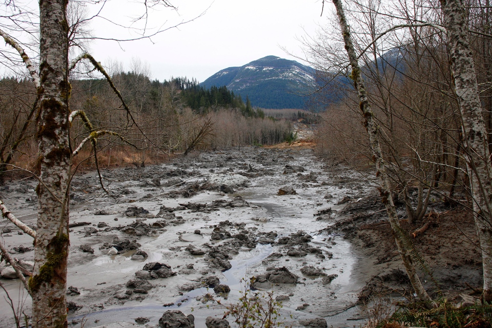 A fatal mudslide brought debris down the Stillaguamish River near Oso Saturday, March 22, 2014. (The Herald / Genna Martin)