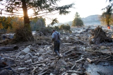No more signs of life in Washington State mudslide