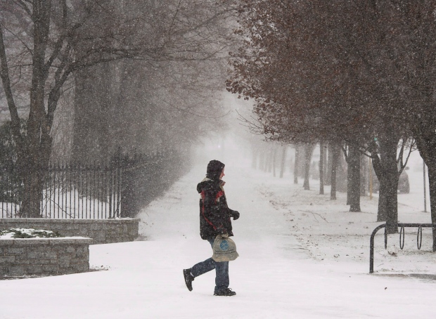 Pedestrian walks through Halifax winter storm