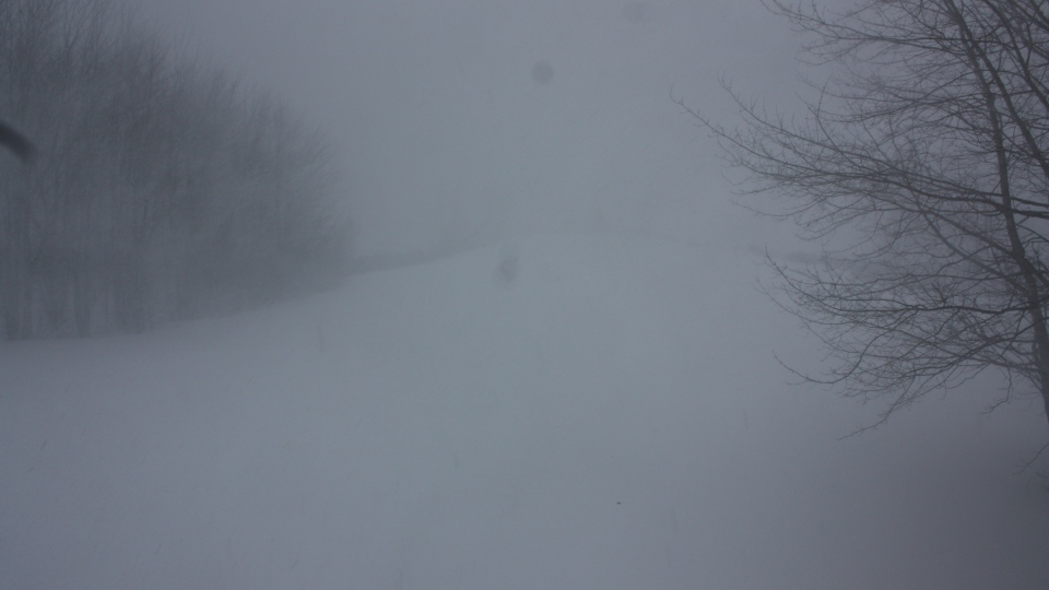 Almost no visibility in Hebbville, N.S. as a spring storm hits the Maritimes, Wednesday, March 26, 2014. (Danielle Sarty / MyNews)