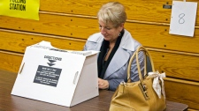 Election Day in N.L. as Tories aim for third majority
