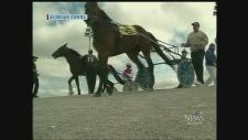 Horse Racing Georgian Downs