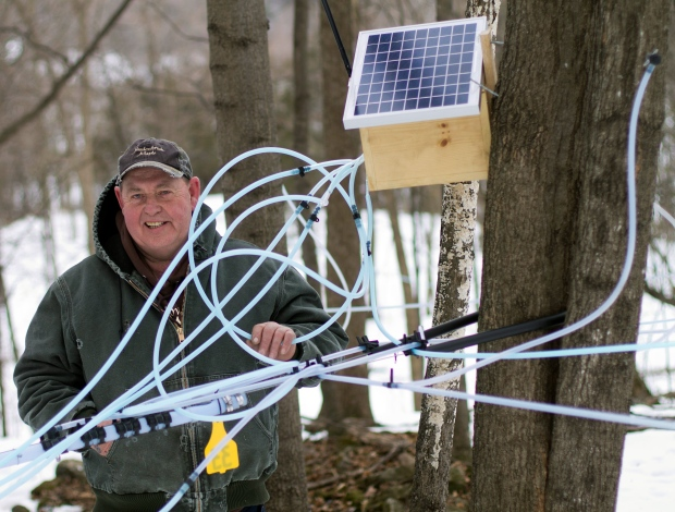 Maple syrup producers use new technology