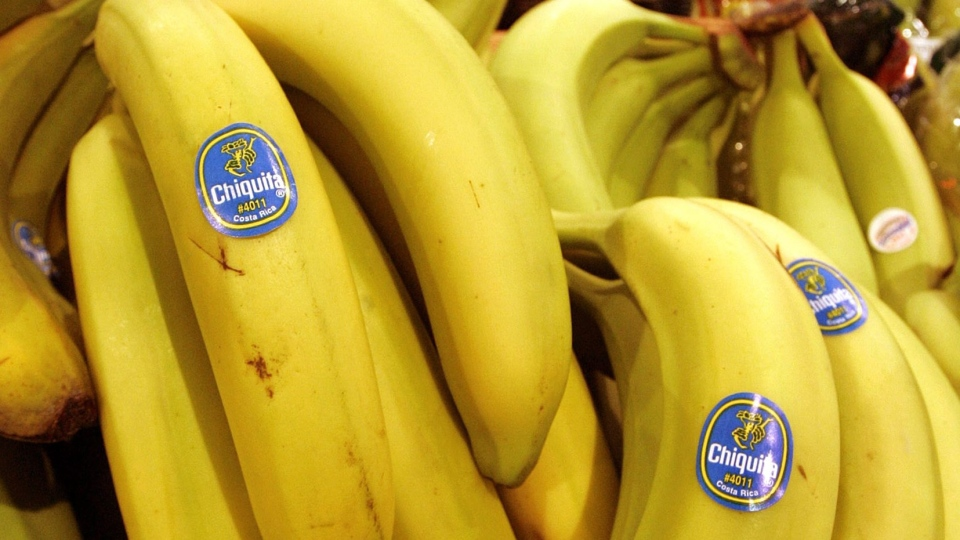 Chiquita bananas are on display at a grocery store on Aug. 3, 2005. (AP/Amy Sancetta)