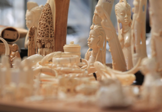 Ivory objects seized at Brussels airport