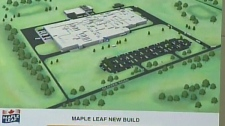 Rendering of Hamilton Maple Leaf Foods plant.