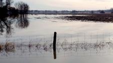 Springwater Flooding