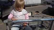 Grocery carts and bags riddled with nasty germs