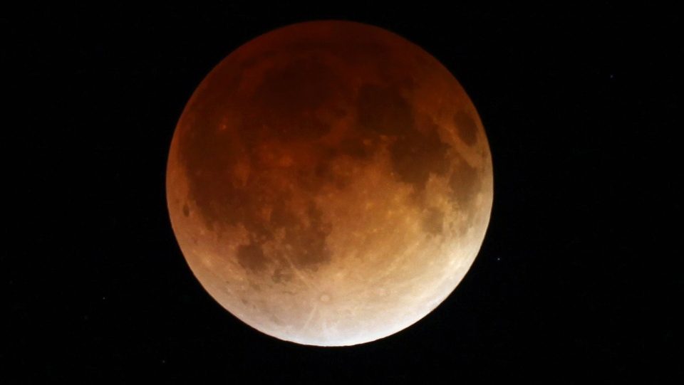 The moon glows a red hue during a total lunar eclipse Tuesday, April 15, 2014, as seen from the Milwaukee area. (Milwaukee Journal-Sentinel / Mike De Sisti)
