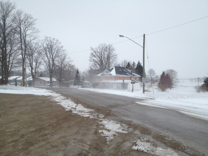 A school bus driver was stopped and found to have consumed alcohol on this section of Clyde Line in Bluevale, Ont. (David Imrie / CTV Kitchener)