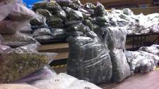 EPS marijuana seizure