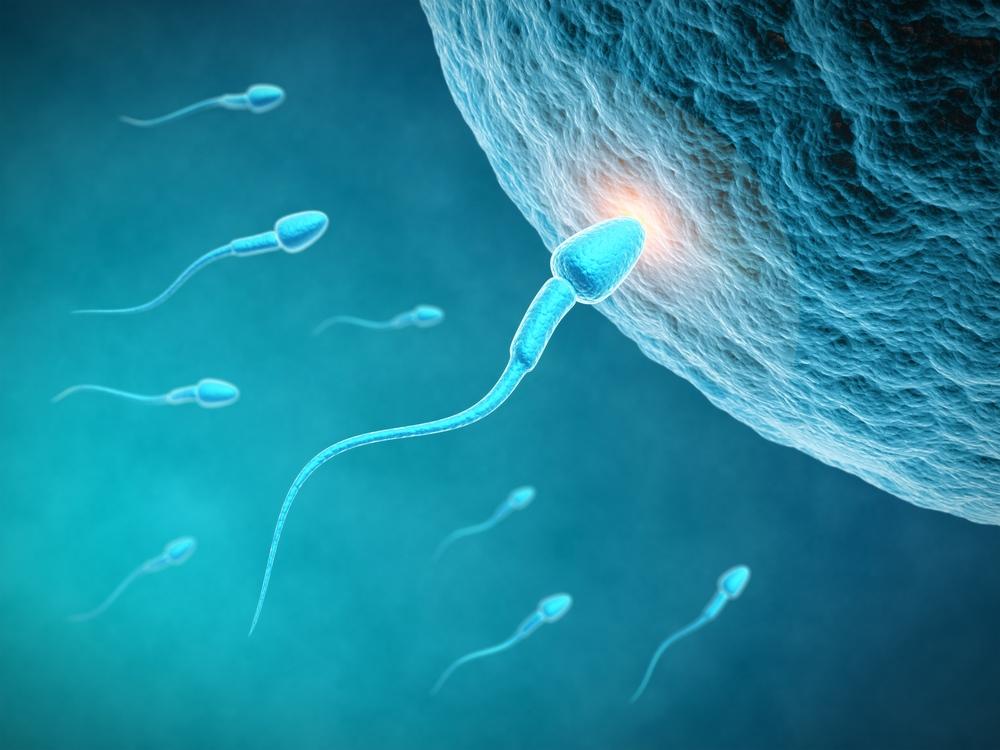 Sperm generic