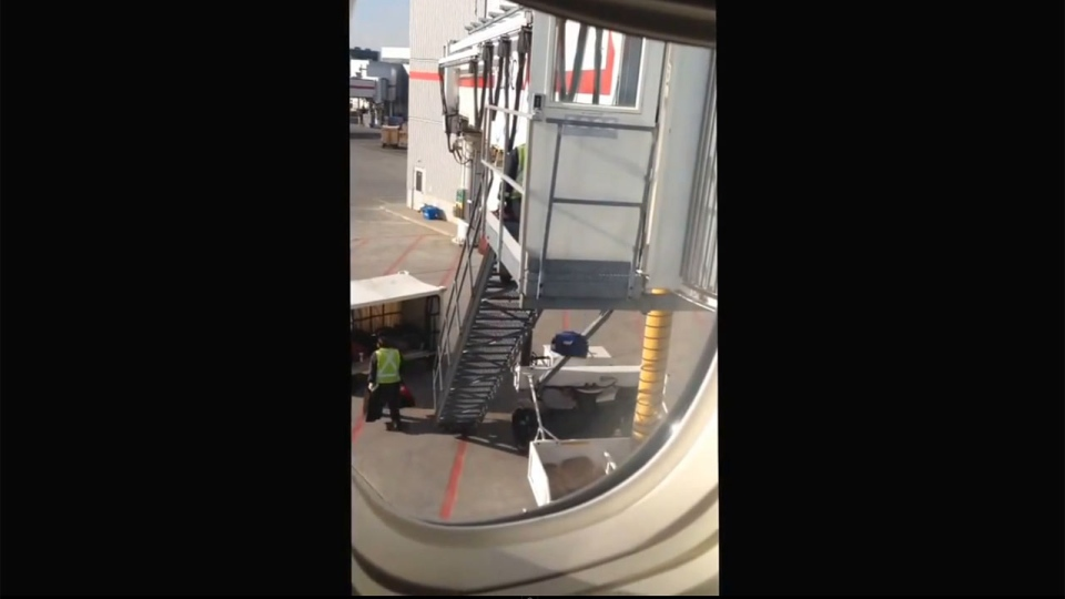 Dwayne Stewart was flying from Toronto to Vancouver Friday and filmed a video from his seat on the plane he says shows an Air Canada baggage handler tossing bags from the top of a stairway into a bin, a distance he estimates to be about 20 ft., or six metres. (Image: YouTube screen grab)