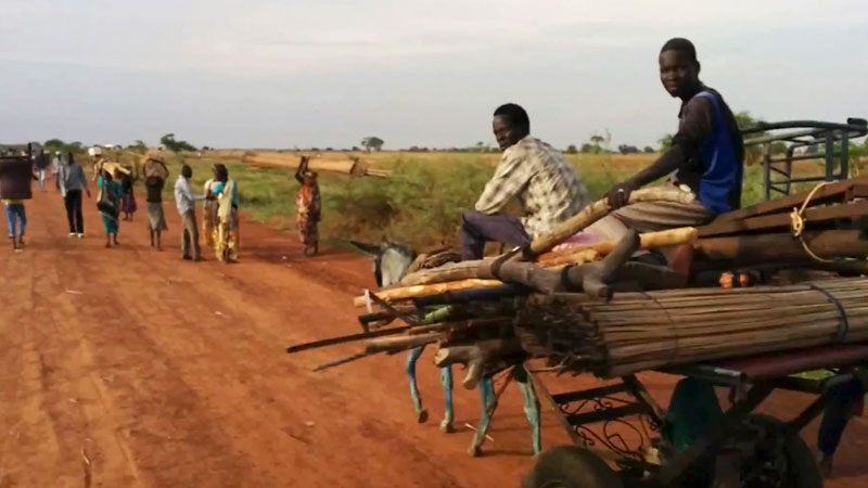 People travel on the road near Bentiu South Sudan on Sunday April 20, 2014.  (AP Photo/Toby Lanzer, United Nations)