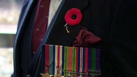A war veteran wears a red poppy above his row of medals. (file)
