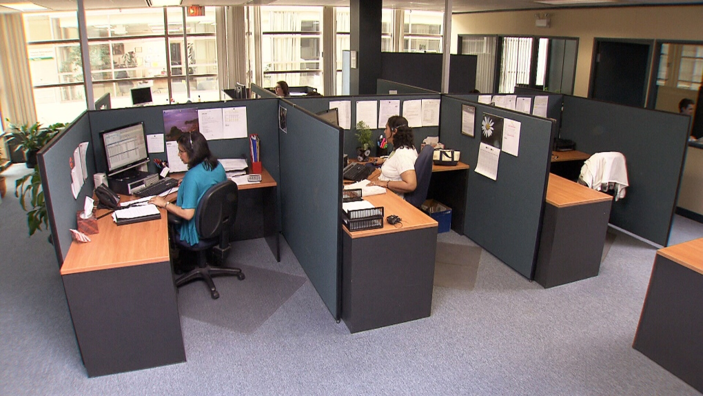 Workers in office cubicles