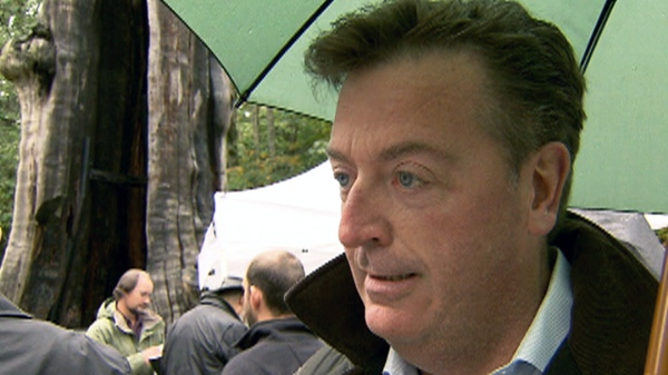 NPA park board commissioner Ian Robertson speaks with CTV News in this undated photo.