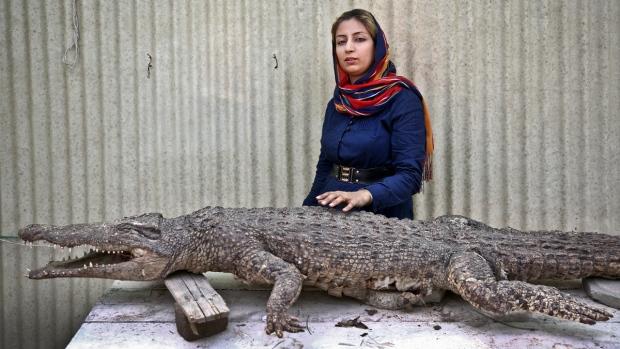 Iranian entrepreneur Mojgan Roostaei