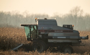 A farmer harvests corn in a field southwest of St. Thomas, Ont., on Thursday, Nov. 22, 2012. (The Canadian Press/Geoff Robins)