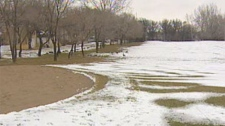 The Winnipeg Canoe Club is one of the golf courses the city is accepting bids on for potential development.