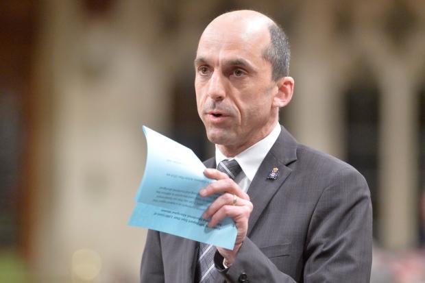 Minister of Public Safety Steven Blaney in Ottawa