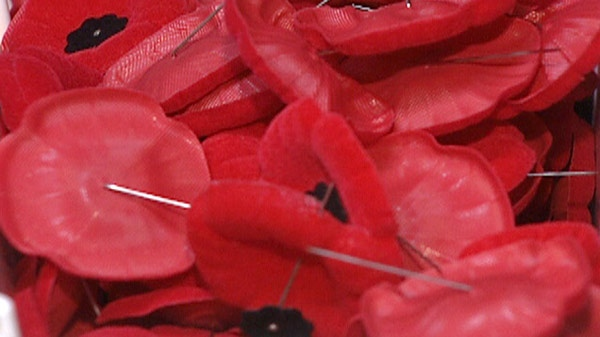 Poppies are seen in a Royal Canadian Legion poppy box.