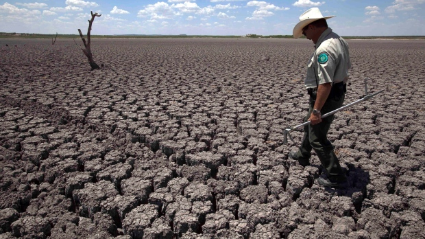 UN climate report: Change land use to avoid a hungry future