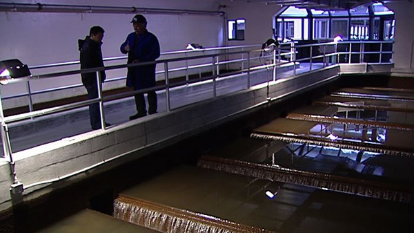CTV Ottawa went on a tour of the city's water filtration plant to see how the city purifies its water.