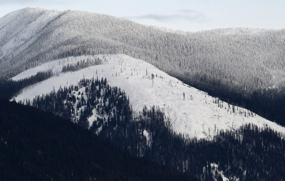 Kokanee Glacier is pictured north of Nelson, B.C., on Tuesday, January 18, 2011. (Darryl Dyck / THE CANADIAN PRESS)