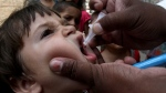 FILE - A Pakistani health worker gives a polio vaccine to a child in Lahore, Pakistan, Monday, May 19, 2014. (AP / K.M. Chaudary)