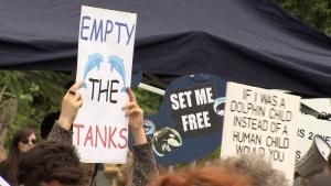 Aquarium protest signs