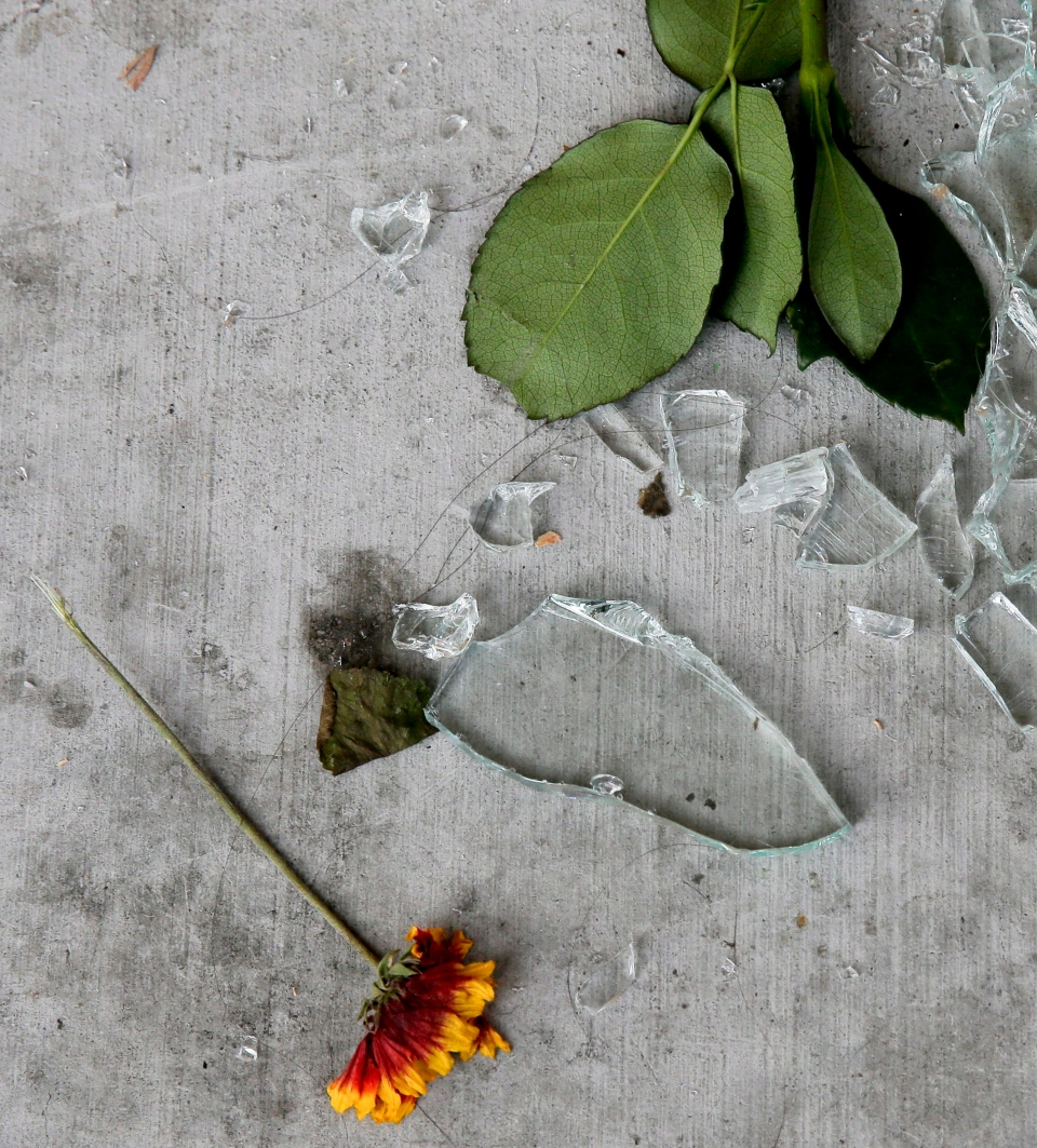 A flower rests near pieces of a broken window from the IV Deli Mart, Sunday, May 25, 2014, at one of the scenes of Friday night's mass shooting in the Isla Vista area near Goleta, Calif. Calif. (AP / Chris Carlson)