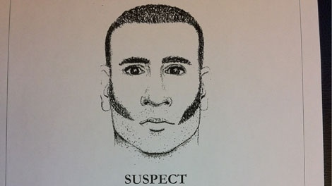 A sketch shows the suspect in the Oct. 31, murder of 18-year-old Taylor Van Diest in Armstrong. (Handout)