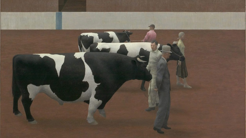 """The 1955 painting by Alex Colville """"Cattle Show"""" is shown in a handout photo."""