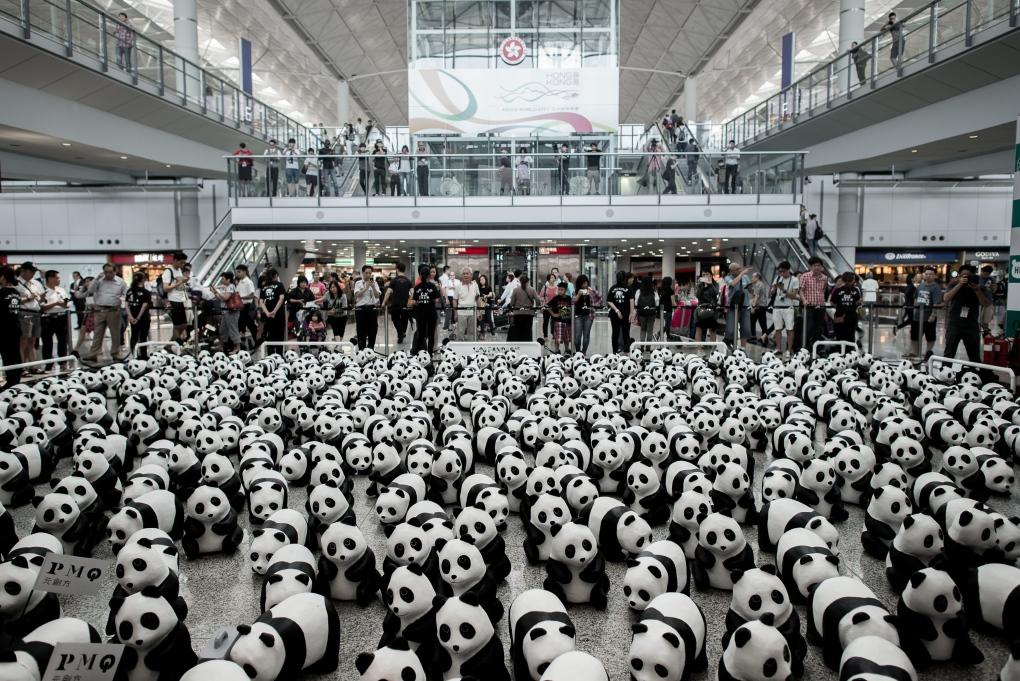 Paper mache pandas land at Hong Kong airport