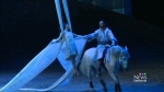 CTV Edmonton: Local farmer in Odysseo by Cavalia