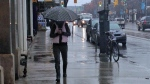 A heavy rain storm is expected to drench Toronto with as much as 40 millimetres of rain over the next two days. (Chris Kitching / CP24)