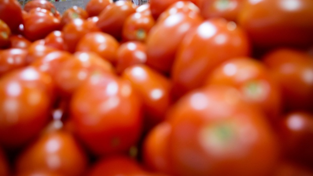 A display of tomatoes at Eraa Supermarket in Toronto, Ont. (THE CANADIAN PRESS / Darren Calabrese)