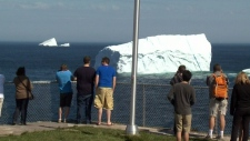 Icebergs off the coast of Newfoundland