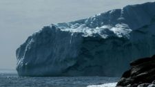Iceberg floats close to shore in Newfoundland
