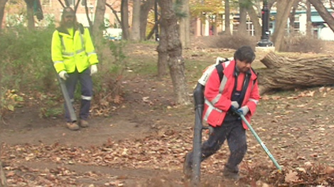 Volunteers clean up St. James Park on Thursday, Dec. 8, 2011, after it hosted Occupy Toronto protesters for well over a month.